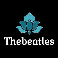 The Beatles Fashion T-Shirt, Cool Trending T-shirt, The Best Design Shirt